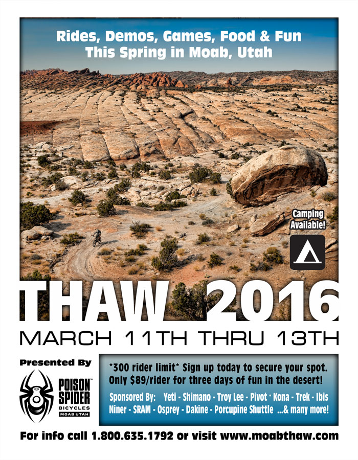 2016 Thaw Poster